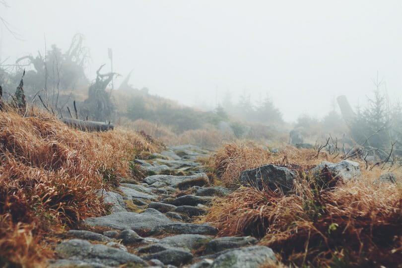 Steine im Weg - lass dich nicht entmutigen